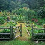 potager-garden-country-living-300x234