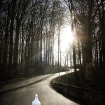 lighted-path